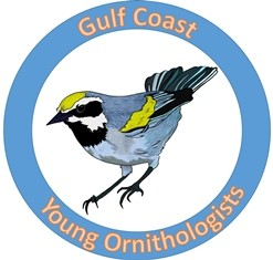 GCYO logo