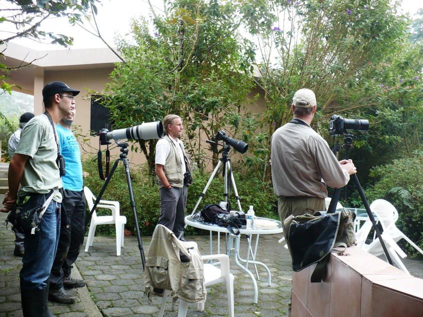 Ecuador Las Gralarias birding group