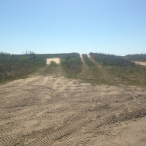 tire tracks over the dunes (2)