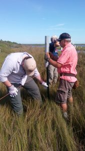 three volunteers stand in high grass placing a fence